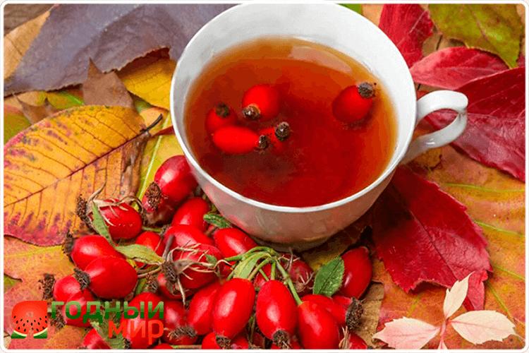 чай боярышника