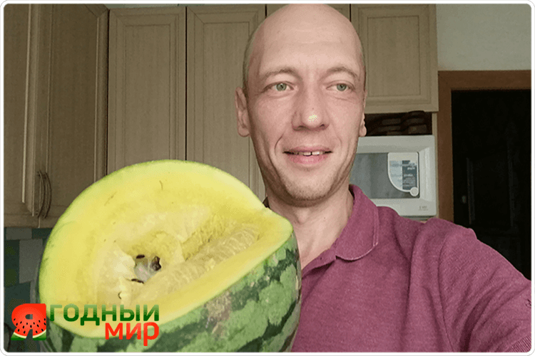 олег буянов с желтым арбузом